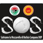 Eletto il nuovo CdA del Consorzio della Mozzarella di Bufala Campana Dop